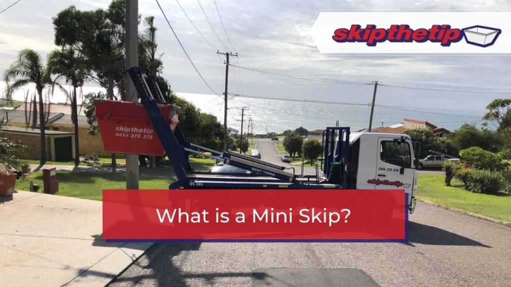 What is a Mini Skip